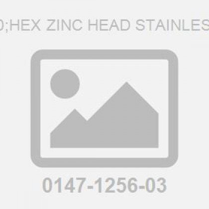 Screw: M 6X 60;Hex Zinc Head Stainless Steel Plate