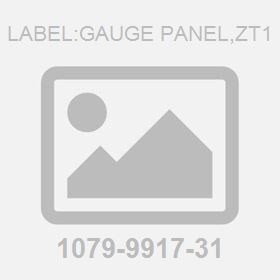 Label:Gauge Panel,Zt1